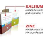 Harga 1 Paket Obat Peninggi Badan Tiens (NHCP dan Zinc) 10 Hari Termurah