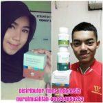info lengkap perbedaan zinc capsules, susu kalsium nhcp dan spirulina tiens