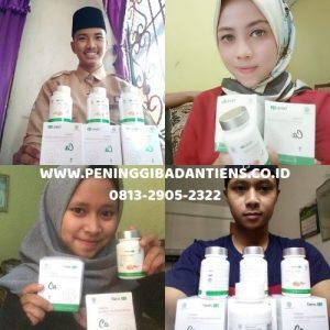 distributor resmi peninggi badan tiens indonesia