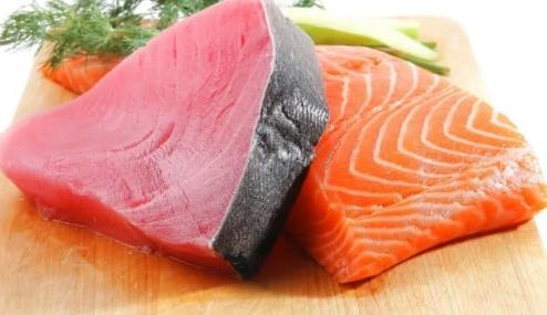 Protein pada ikan